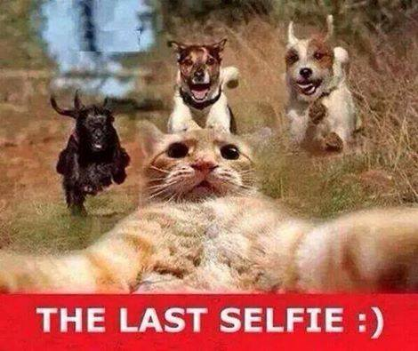 The last Selfie 2