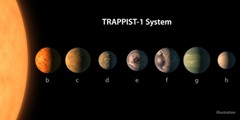 Comparing the TRAPPIST-1 planets